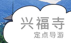 兴福寺定点导游